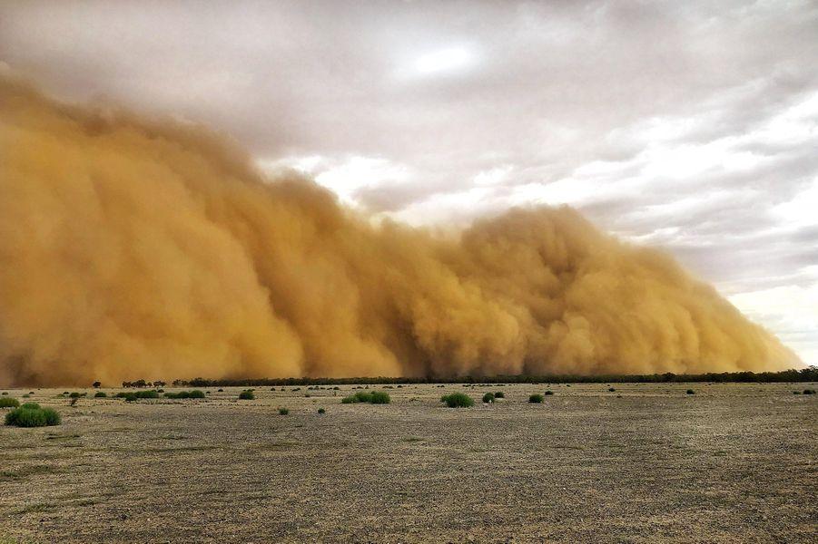Tempête de sable observée à Dubbo, en Nouvelle-Galles du Sud.
