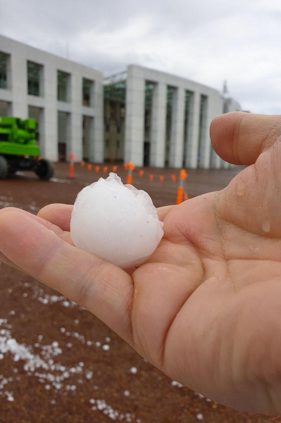 Ces grêlons tombés sur Canberra font la taille de balles de golf.