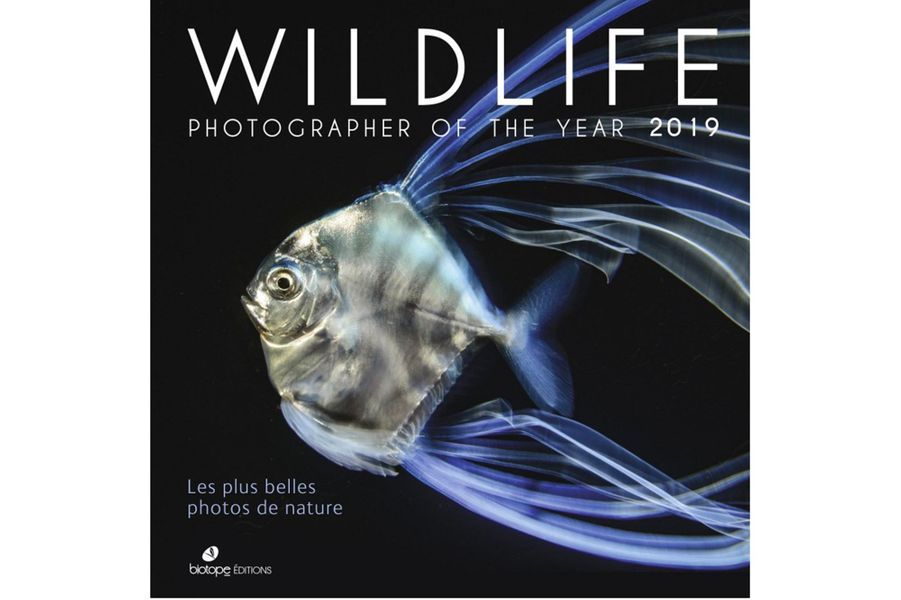 La couverture du prochain ouvrage duWildlife Photographer of the Year 2019, édition Biotope.