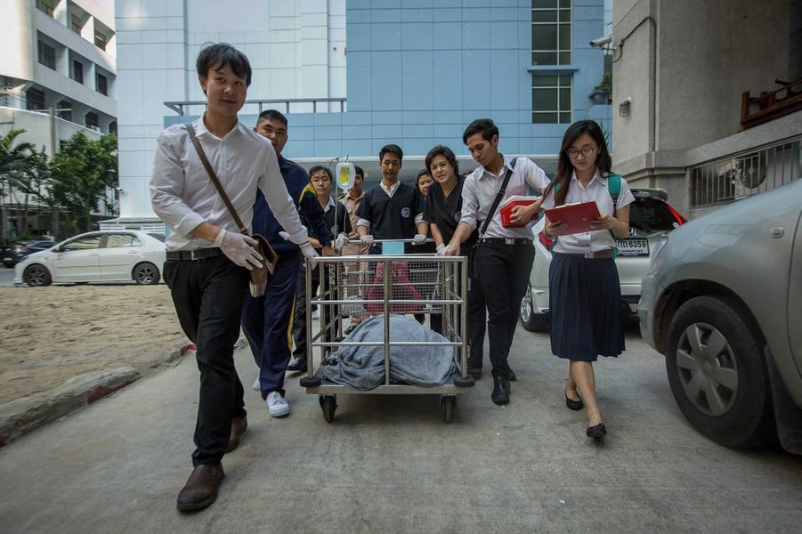 Tirelire la tortue a été transportée à l'hôpital Chulalongkorn.
