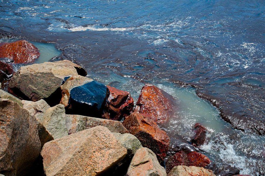 De mystérieuses marées noires sur plus de 130 plages — Brésil