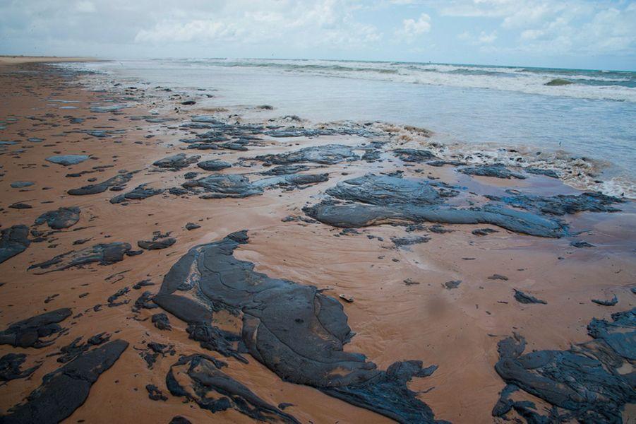 Brésil: Une marée noire pollue 130 plages - Monde