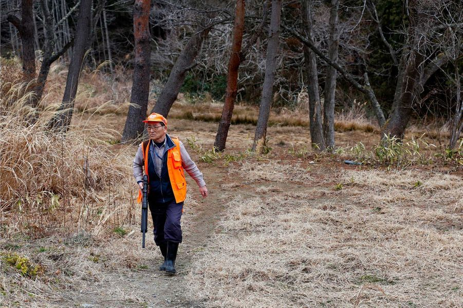 Des équipes de chasseurs ont été recrutées pour combattre le fléau des sangliers àTomioka.