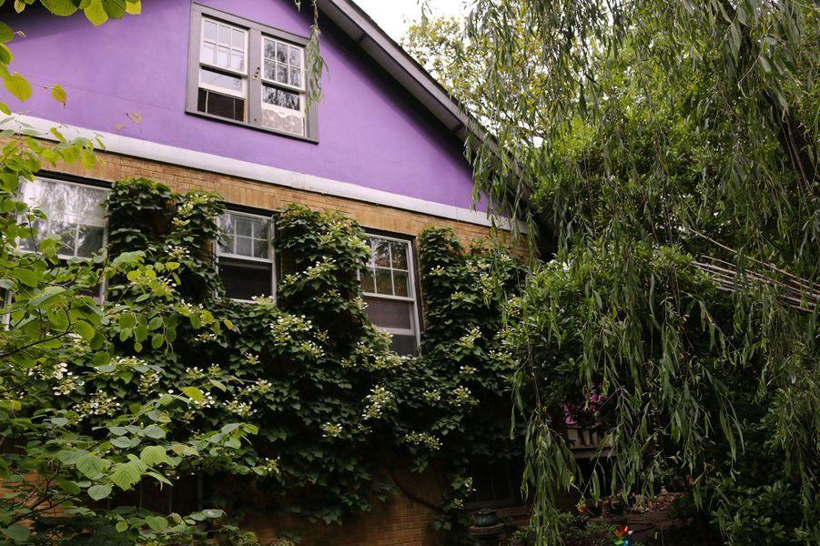 La maison deJim Nichols, àTakoma Park dans le Maryland, est recouverte de plantes vivaces.