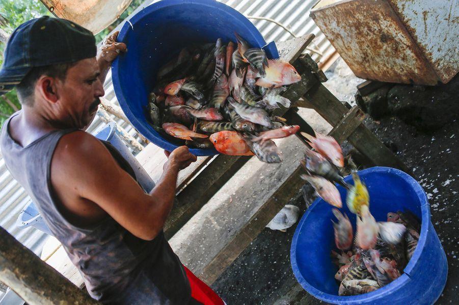 Les pêcheurs locaux au Nicaraguan'en peuvent plus de la pollution présente dans le lacManagua.