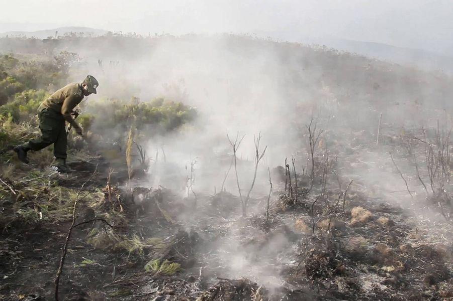 Un incendie s'est déclaré dimanchesur les flancs duKilimandjaro, en Tanzanie