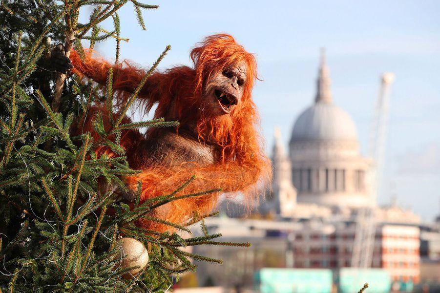 Cet orang-outan électrique s'est promené dans les rues de Londres pour sensibiliser la population aux dangersde la culture des palmiers à huile.