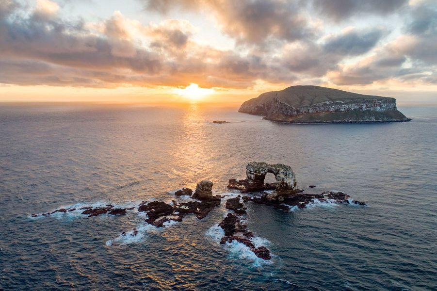 L'île Darwin.
