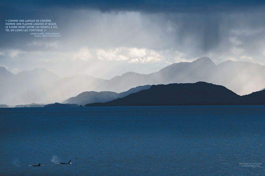 Les fjords de Patagonie, au Chili.