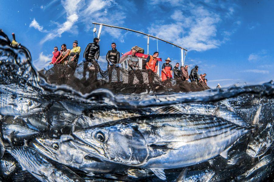 """Tuna fishery during the moment of rising nets"" de Rafael Fernandez,Ceuta, Espagne."