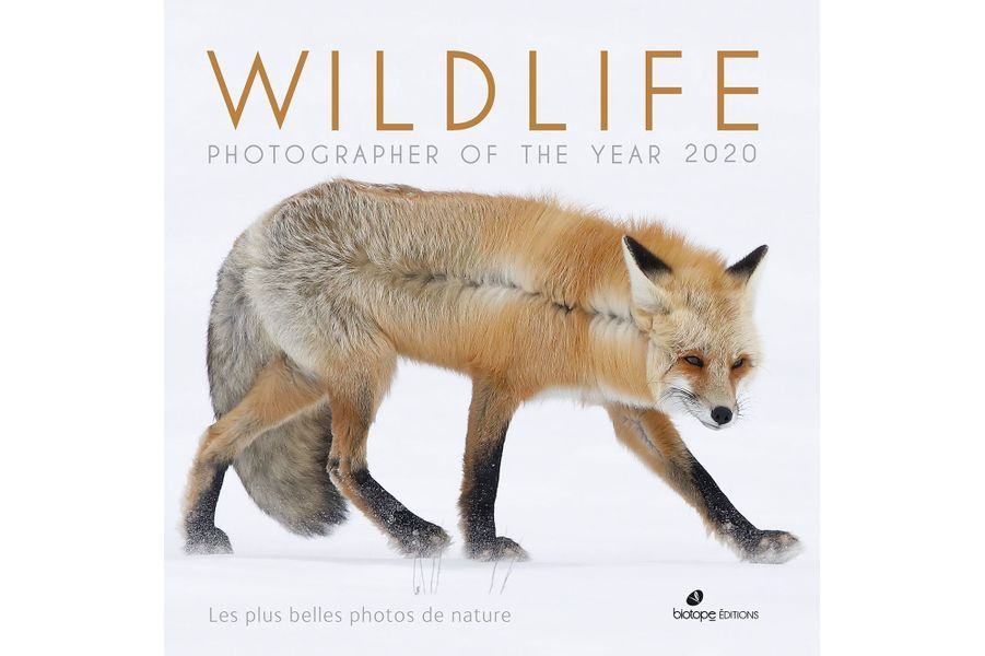 Couverture Editions Biotope Wildlife Photographer of the Year 2020