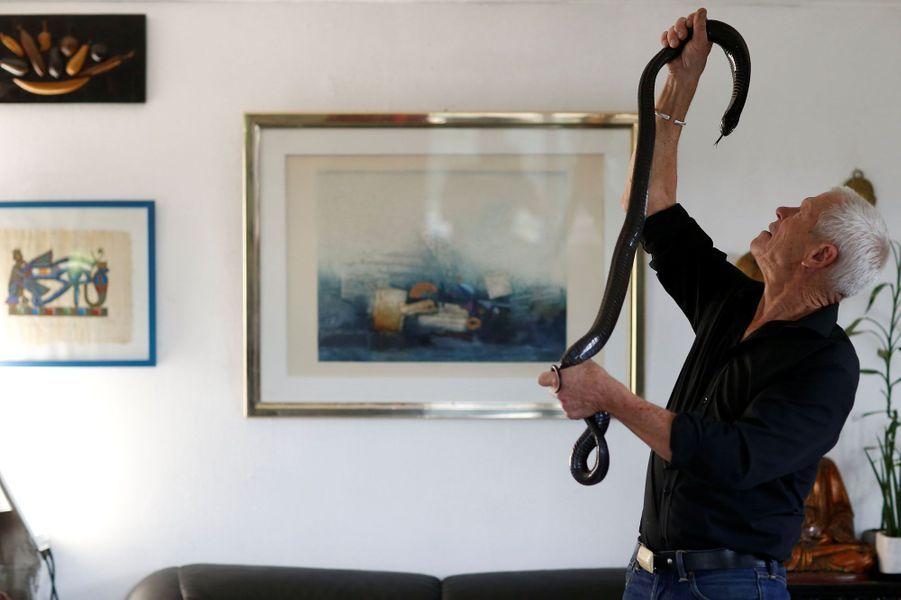 Le herpétologue français Philippe Gillet vit au milieu de près de 500 reptiles, la preuve en images.