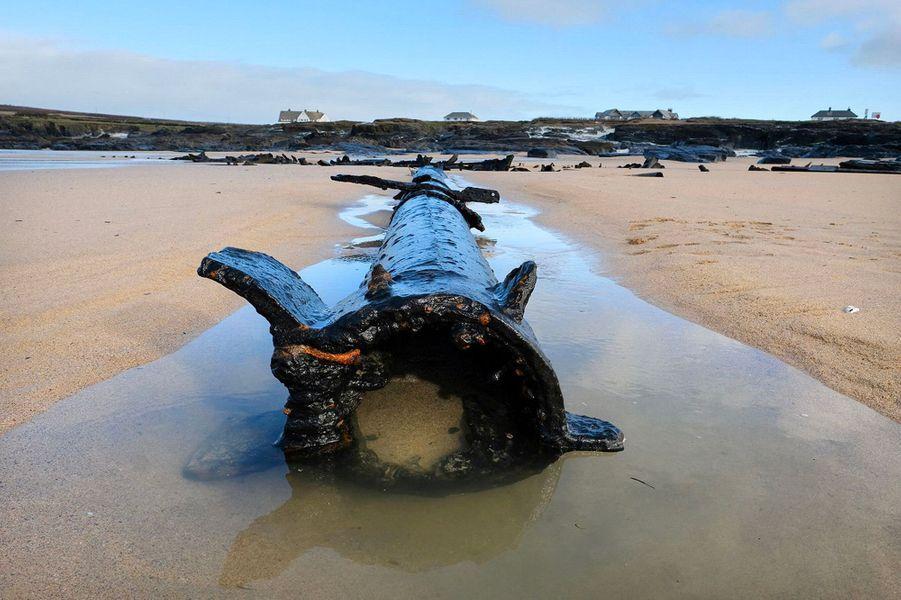 L'épave allemand SV Carl a fait son apparition sur une plage deBooby's Bay, dans les Cornouailles.