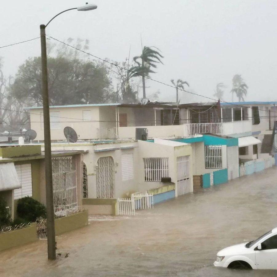 Une image issue d'Instagram montre une rue inondée à Porto-Rico, mercredi.