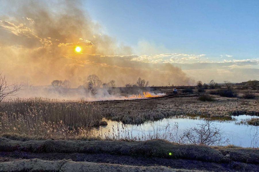 L'incendie dans la zone d'exclusion de Tchernobyl, le 10 avril