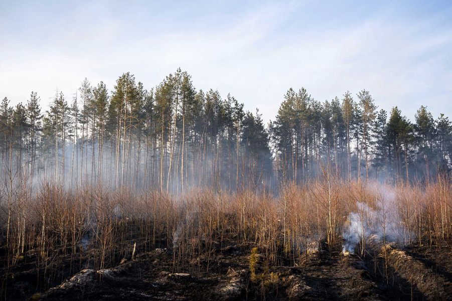 Un feu sévit dans la zone d'exclusion autour de la centrale accidentée de Tchernobyl depuis plus d'une semaine