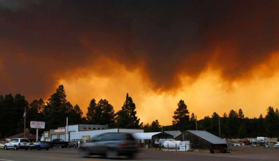 Depuis le 29 mai, un feu de camp non surveillé qui a dégénéré est devenu le deuxième plus grand incendie que l'Arizona ait connu. Plus de 157 000 hectares sont partis en fumée et 3000 personnes ont dû être évacuées. Aucune victime n'est à déplorer, mais les pompiers peinent à contenir les flammes, encouragées par les forts vents qui touchent la région.
