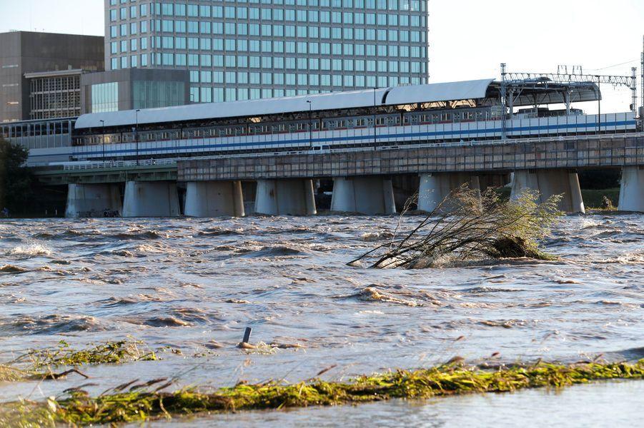 La rivière Tama, à Tokyo