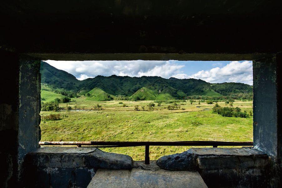 Une prairie de la DMZ vue d'un bunker.