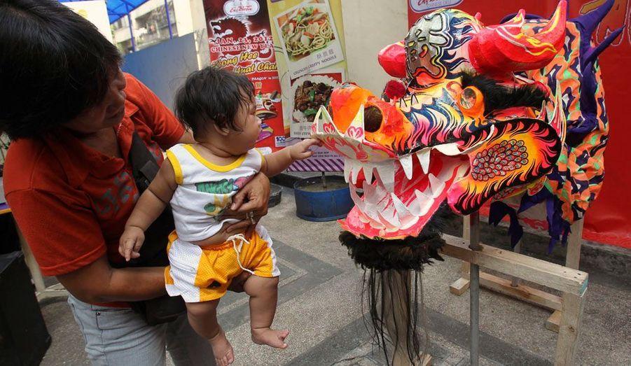 Durant les années du dragon, il y a une sensible augmentation du taux de naissance, de nombreux parents voulant avoir un enfant de ce signe.