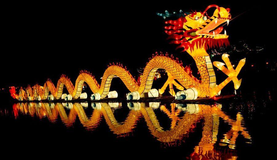 L'année du lapin se termine pour laisser place à celle du dragon, symbole qui devrait apporter sagesse aux enfants qui naîtront en 2012. Coup d'envoie d'une célébration qui s'étale sur 15 jours et s'achève par la fête des lanternes.
