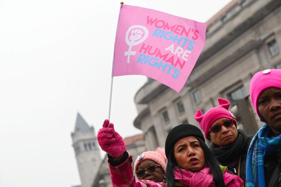 La «marche des femmes» à Washington, le 19 janvier 2019.