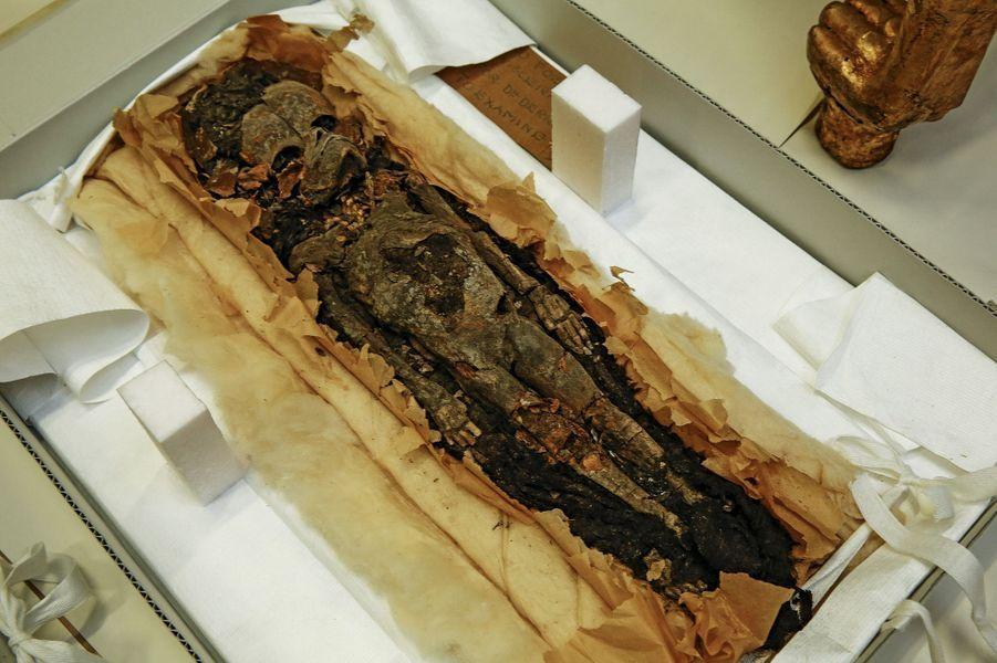 Une des deux momies de fœtus retrouvées dans le tombeau de Toutankhamon.Aucune n'a encore été exposée au public.