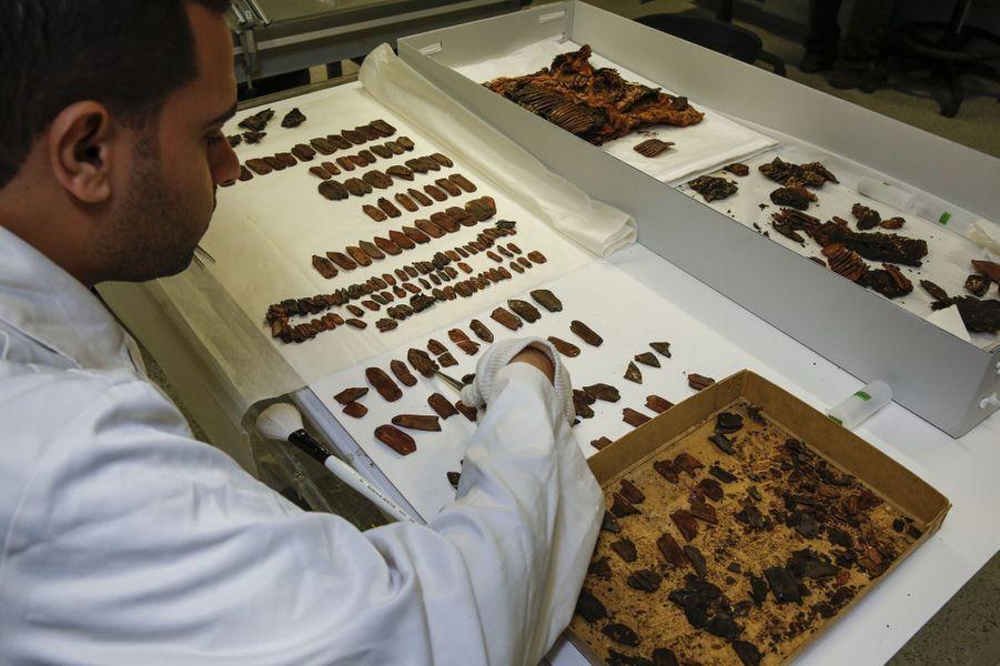 Un vrai puzzle en cuir pour Ahmed El-Sheikha. Dans le laboratoire de conservation biologique, il doit reconstituer un plastron tel qu'il a été découvert dans la sépulture de Toutankhamon