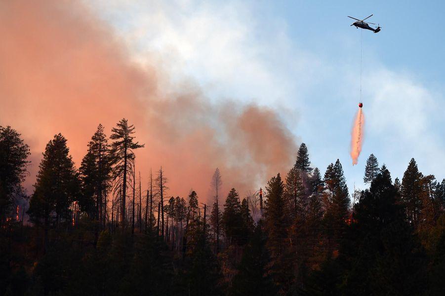 Les pompiers luttant contre «Camp Fire», près de Paradise, le 11 novembre 2018.