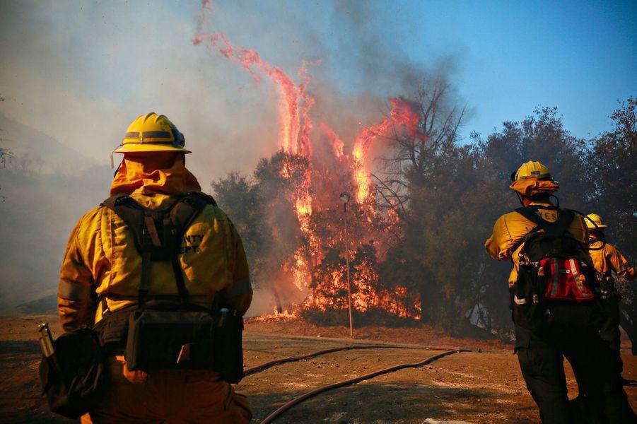 Les pompiers luttant contre le «Woolsey Fire», à Malibu, le 10 novembre 2018.