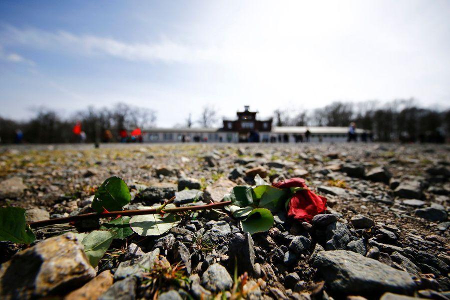 70e anniversaire de la libération de Buchenwald: l'émotion des survivants