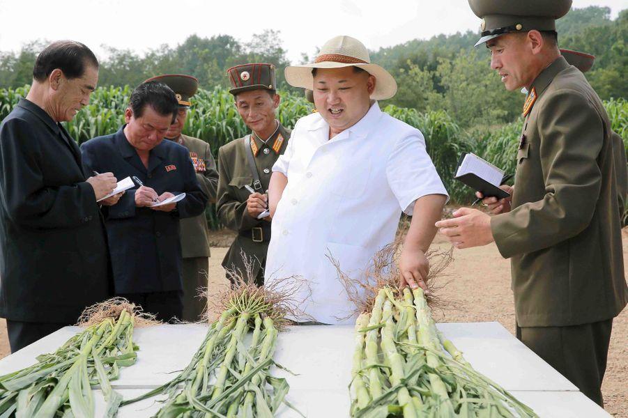 Le dictateur nord-coréen Kim Jong-un, photographié en août 2015 dans une ferme