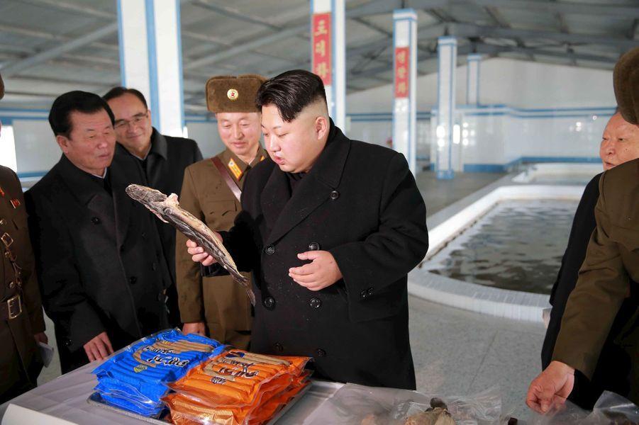 Le dictateur nord-coréen Kim Jong-un, photographié en décembre 2015 dans une ferme piscicole