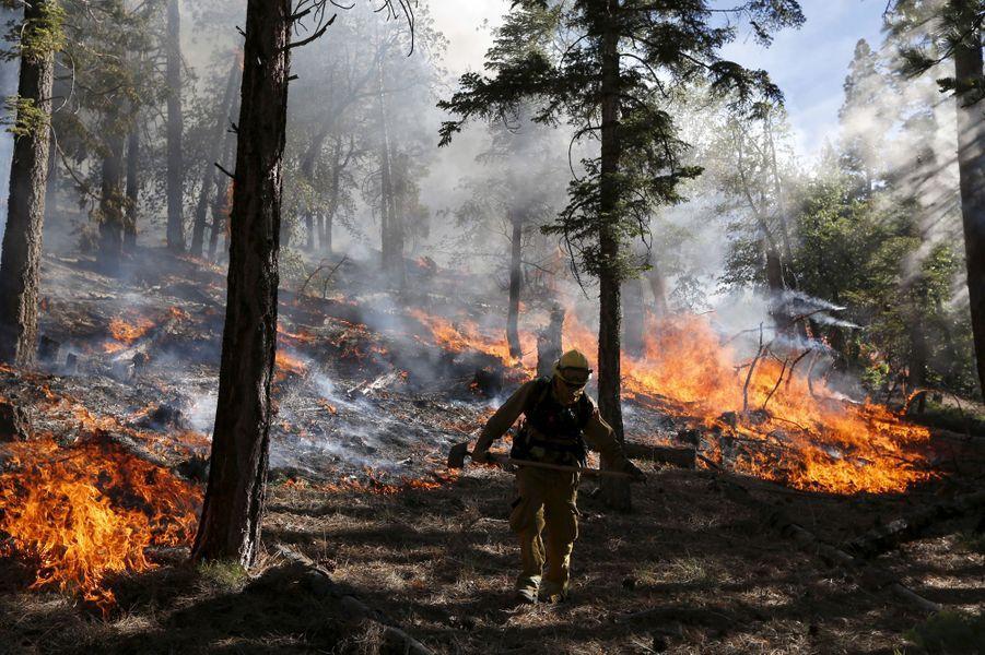 Un incendie ravage la Californie