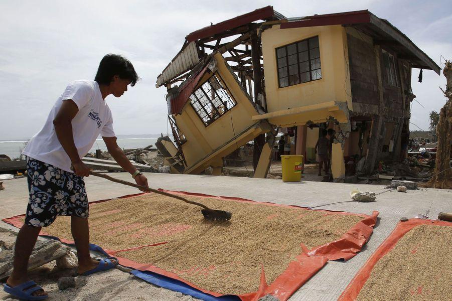 Dans la province de Samar, la vie continue malgré tout pour cet homme qui sèche le son de riz, devant sa maison fendue en deux par le typhon.