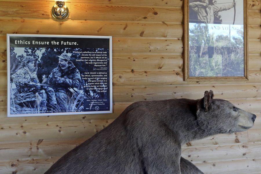 Promotion de la chasse éthique