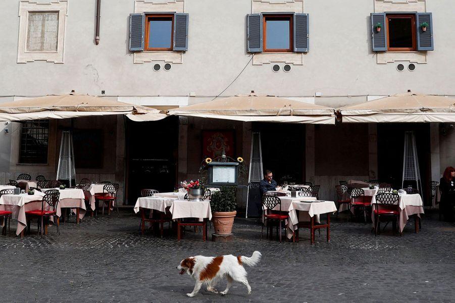 Un chien passe devant un restaurant presque vide dans le quartier de Trastevere, à Rome, Italie, le 10 mars.