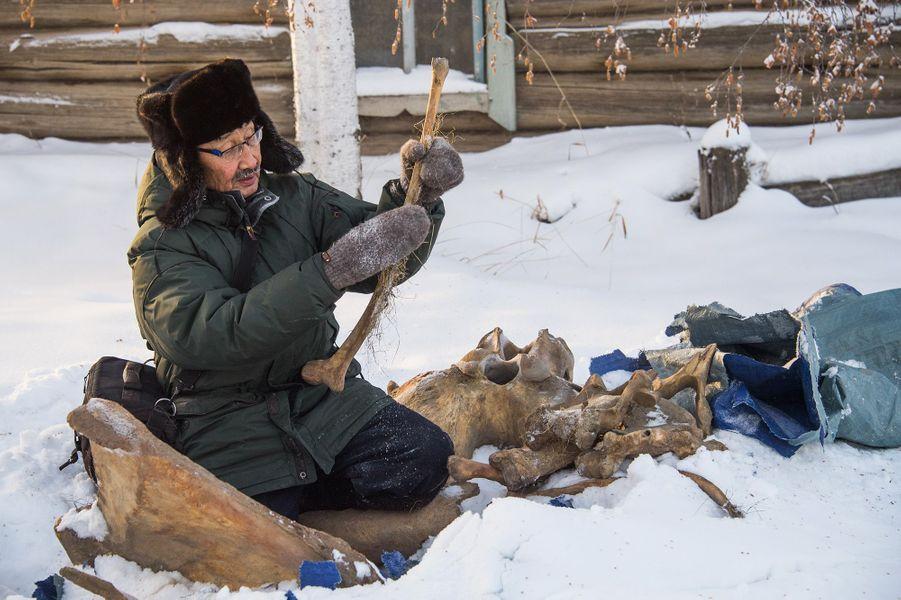 Prokopi Novogovitsyne attrape sous une bâche un os de la taille d'une petite assiette: une vertèbre de mammouth