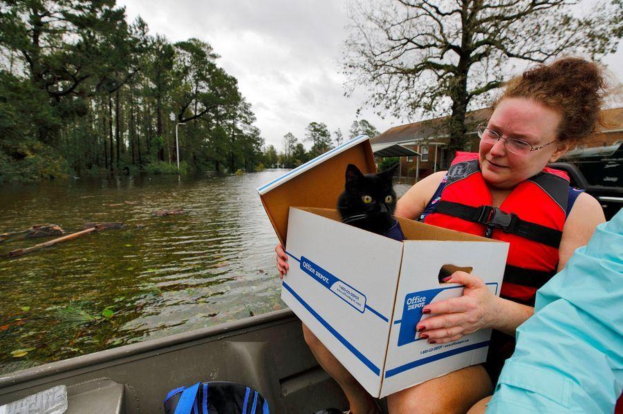 Un femme tient son chat Jackjack dans une barque, au milieu des inondations à Leland.