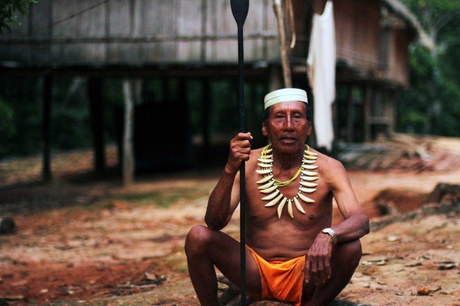 Salomon Dunu Uaqui Moconoqui, un grand-père matsés et expert en plantes médicinales, a été l'un des premiers de son groupe à être contacté par les missionnaires évangélistes américains en 1969. Il porte un collier confectionné en dents de jaguar et tient une lance faite de bois de pejibaye. Les Matsés, connus comme le ʻpeuple du jaguar' au Pérou et au Brésil, sont divisés entre ceux qui sont tsasibo et ceux qui sont macubo, termes qui se réfèrent à la manière dont ils se comportent à l'égard des autres êtres humains, esprits et animaux. Depuis le moment de sa conception, le groupe auquel appartient un Matsés est déterminé par celui de son père. Aujourd'hui, les Matsés sont menacés de perdre leurs terres au profit de la compagnie pétrolière canadienne Pacific Rubiales qui prévoit d'ouvrir des centaines de milliers de kilomètres de lignes de test sismiques à travers leur forêt et de forer des puits d'exploration pétrolière. Nos ancêtres nous ont toujours dit que les étrangers étaient source de conflit, nous dit Marcos, un Matsés. Comme pendant la période du boom du caoutchouc, ils reviennent encore pour créer des conflits parmi nous. En tant que peuple indigène, nous avons besoin d'espace pour habiter et pouvoir chasser. Je suis prêt à affronter la compagnie pétrolière, comme nos pères nous ont préparés à le faire.Survival International mène une campagne internationale pour empêcher que les terres des Matsés soient dévastées par Pacific Rubiales et faire en sorte que leur survie en tant que peuple ne soit pas compromise.