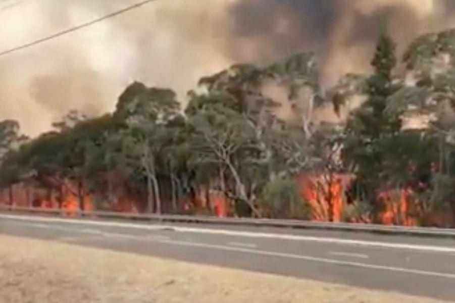IncendieenNouvelle-Galles du Sud, le 21 décembre 2019.
