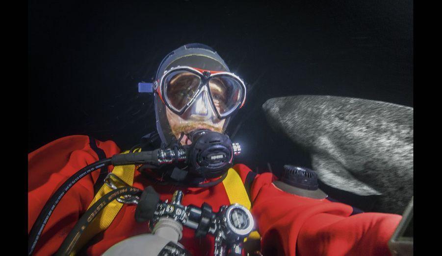 Alban : le baiser de la mort avec le seul requin des eaux polaires, skalugsuak (Somniosus microcephalus) qui peut atteindre 7mètres.