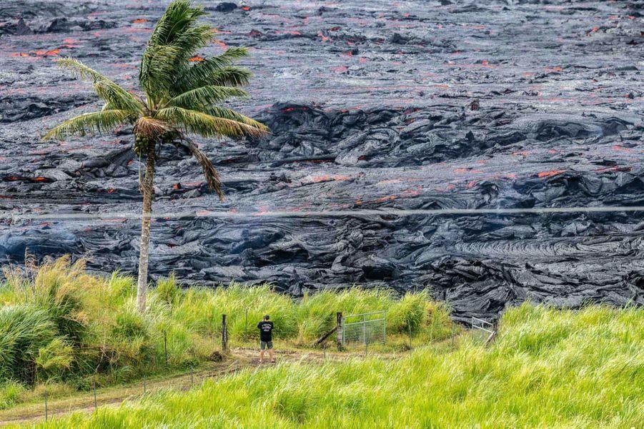 Un homme en short et tongs face à la mer de lave solidifiée.