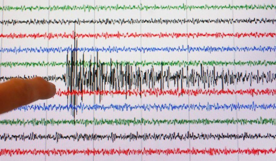 Un graphique du Réseau national de surveillance sismique (Renass) montrant l'intensité du séisme qui a frappé Haïti mardi soir.