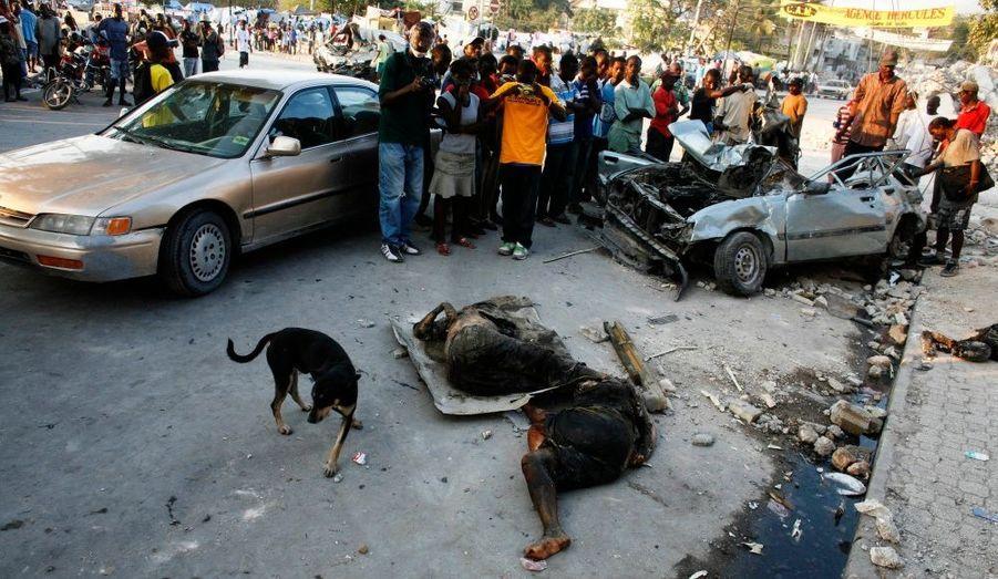 Dix jours après le tremblement de terre, les cadavres gisent encore dans les rues de la ville.