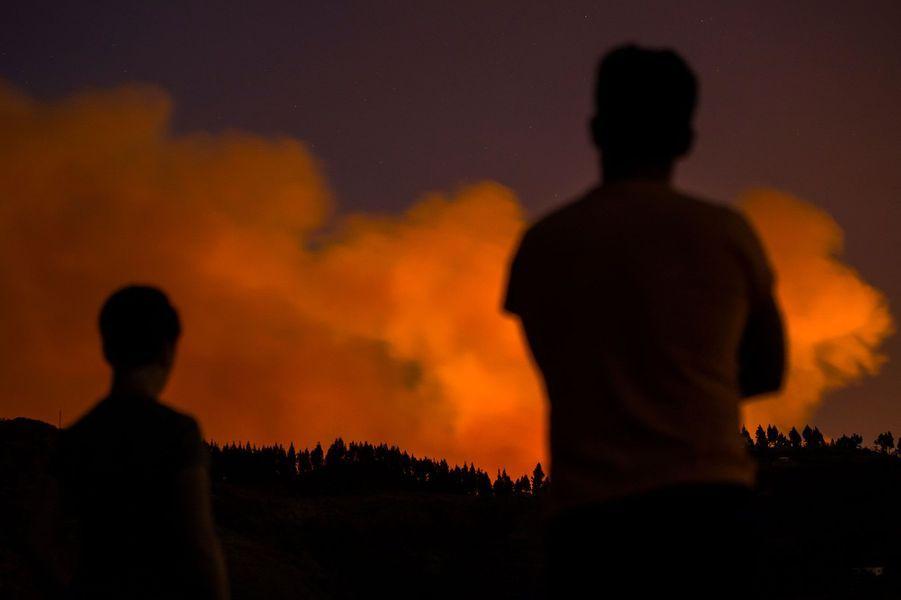 Un violent incendie ravage l'île de Grande Canarie — Espagne