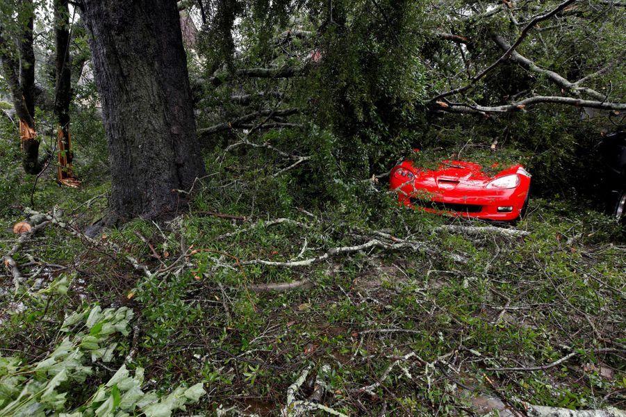 L'ouragan Florence a fait vendredi ses premiers morts sur la côte atlantique des Etats-Unis, dont une femme et son bébé, accompagné par des vents qui ont déraciné des arbres et des pluies torrentielles qui ont provoqué des inondations, avec des dizaines d'habitants pris au piège.Photo prise à Wilmington.