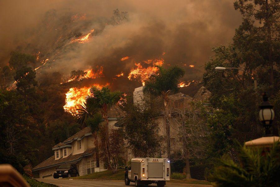 Un violent incendie a ravagé la forêt nationale d'Angeles, au nord-est de Los Angeles, jeudi. Le feu a été accidentellement allumé par trois campeurs. Les flammes se sont rapidement propagées, avant d'atteindre les habitations. Cinq maisons ont été détruites et des milliers de personnes évacuées.