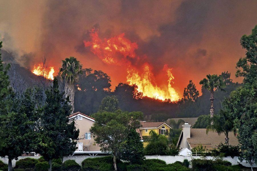 Les flammes de Holy Fire, un incendie criminel, s'approchent dangereusement des maisons de Lake Elsinore, le 9 août.