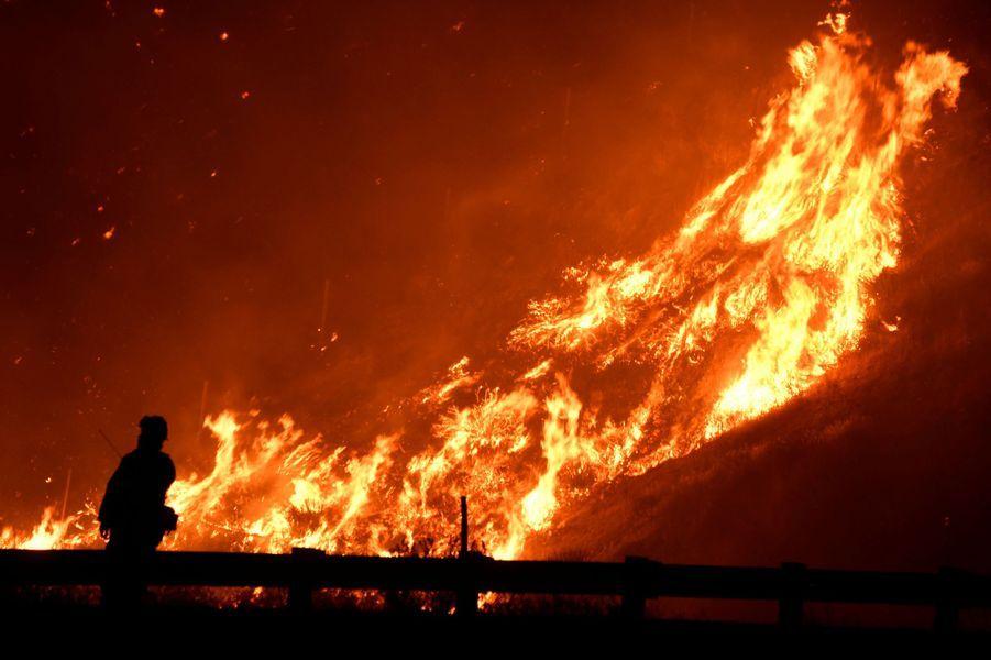 Les pompiers combattent un incendie alors qu'un feu de forêt poussé par le vent continue de brûler dans Canyon Country au nord de Los Angeles, le 25 octobre 2019